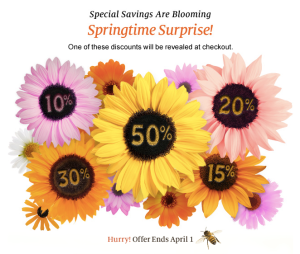 barnes and noble printable coupon or online promo code spring time surprise 1 comment barnes and noble have another coupon